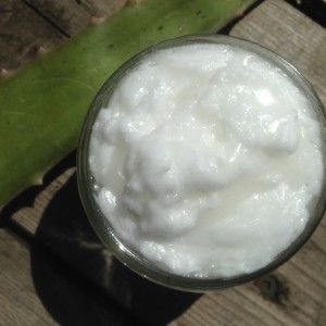 DIY Coconut Aloe Lotion - I'm trying to cut back on store bought toiletries and cosmetics, as much as I can these days. I often buy coconut body lotion from the health food store and two of my three daughters use straight coconut oil as a moisturizer, make-up remover, and ...  Extracting Aloe Gel #diybeautyproducts #naturalproducts #sustainableliving #vegan #animalfriendly #noanimaltesti…