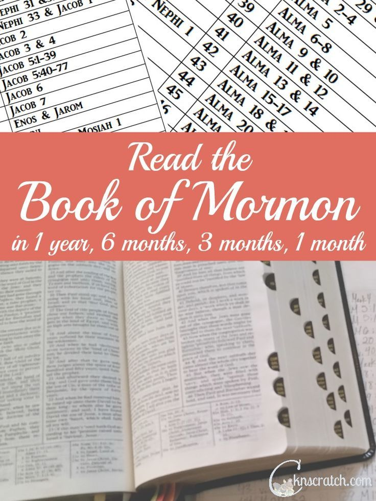 Want to read the Book of Mormon? Use one of these four schedules to help you accomplish your goal.