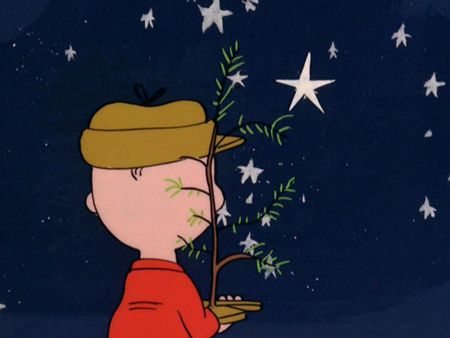 Google Image Result for http://ocawonder.files.wordpress.com/2012/01/charlie-brown-christmas-22.jpg