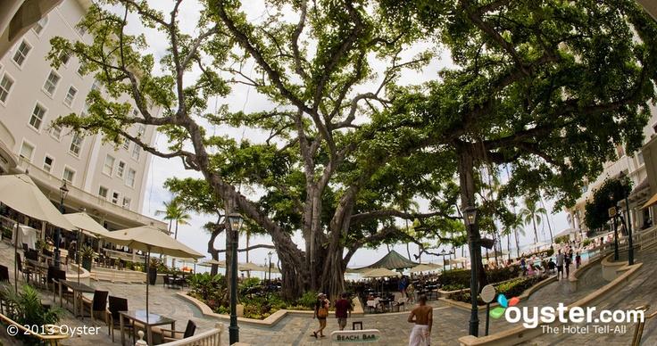 The Banyan Court at the Moana Surfrider, A Westin Resort & Spa