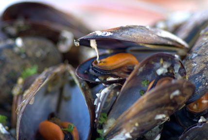 Recept: Moules marinières, vinkokta musslor på franskt vis