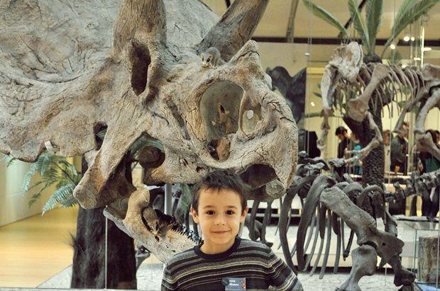 MUSE: Il Museo della scienza di Trento