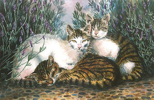 31 best lavender draw paint images on pinterest lavender fields lavender and landscape paintings. Black Bedroom Furniture Sets. Home Design Ideas