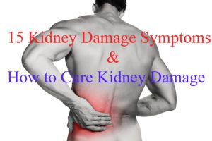 Kidney Damage Symptoms are not that difficult to figure out. What is more important is how to cure kidney problems and even more important is that it should be done easily without expensive surgery or any painful methods of kidney failure treatment. It also depends upon the stages of kidney disease, however, which kidney disease stages you are, you still can figure out the Symptoms of Kidney Damage…