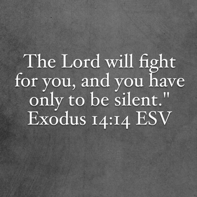 """14 The Lord will fight for you, and you have only to be silent."""" (Exodus 14:14 ESV)"""