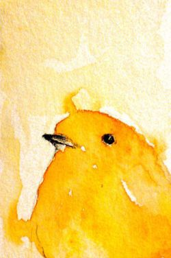 I love this little yellow bird. ..: you know, this could work :..