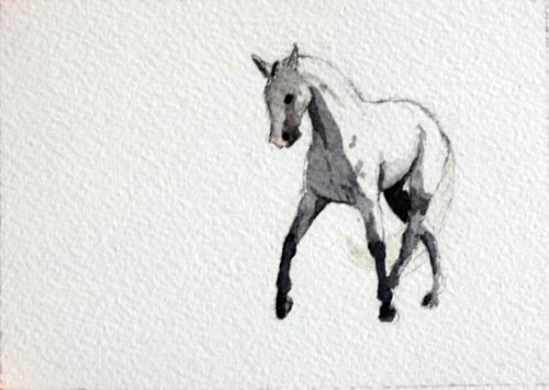Horse Watercolor, Amazing