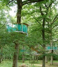 L'Odyssée Verte - Vue du chemin dans les arbres avec ses passerelles - Rambouillet