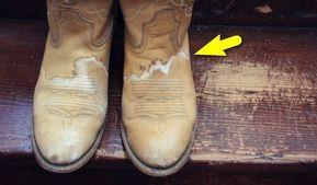 Как убрать пятна соли с обуви и предотвратить появление новых: Средство, которое можно везде носить с собой — Мир Растений