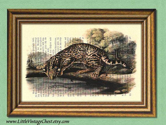 MY BENGAL CAT  Dictionary art print Wall art by littlevintagechest, $7.99