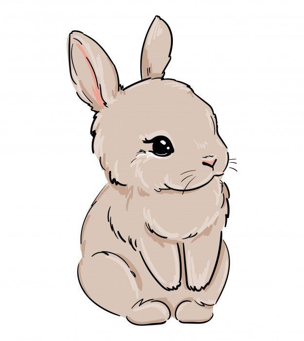 Rabbit Hand Drawn Cute Bunny Illustration Cute Bunny Cartoon Baby Bunnies Drawing Cute Cartoon Drawings