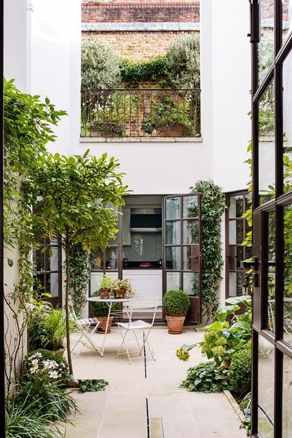 City Courtyard Garden in city garden ideas - small enclosed courtyard garden with crittall french windows and climbing plants against whitewashed walls.