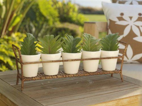 Ceramic Flower Pots on Rattan and Iron Stand by Zodax by Zodax. $36.99. Create a lovely window garden that will add flair to your windowsill. From the Style Summer Collection, these Ceramic Flower Pots are great for planting herbs or flowers. The rattan and iron stand keep your flower pots neatly contained and add sophistication to the set. Includes 5 flower pots and 1 stand.Summer is the season for entertaining. Whether It's a cozy gathering of special friends or a ...