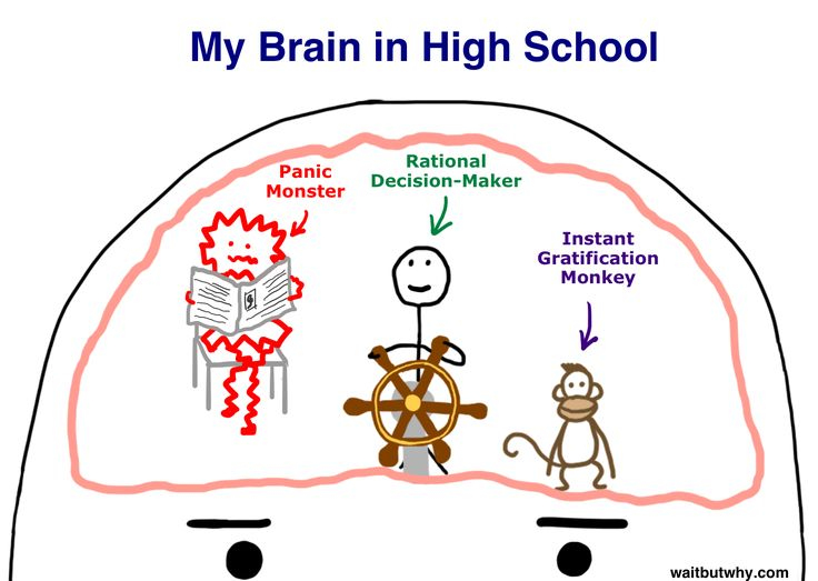 time management for procrastination essay Procrastination essay procrastination: classical conditioning - 1020 words time management was my biggest weakness that.