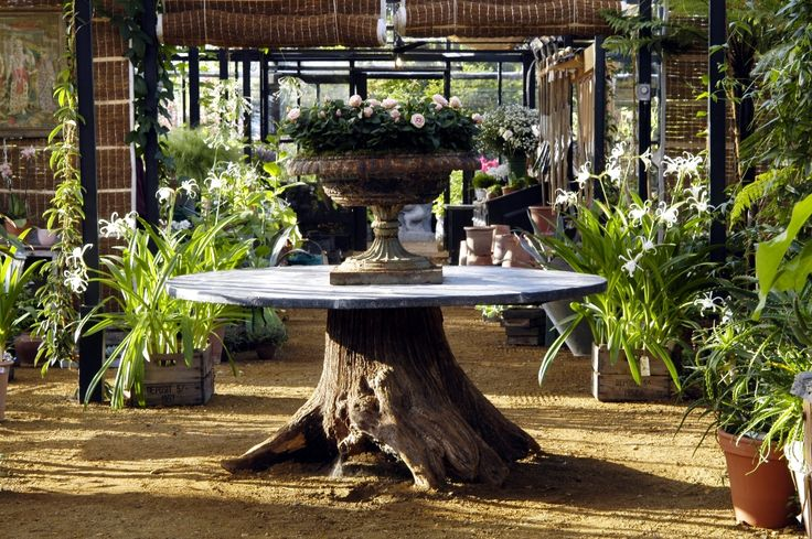 tree trunk zinc topped table // Petersham Nurseries