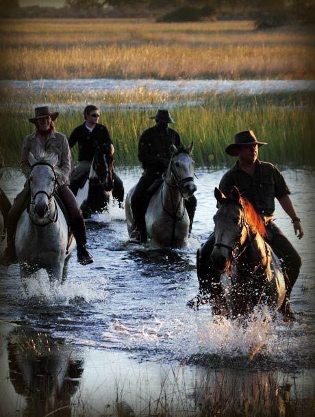 Horseback safaris www.lederlesafaris.com