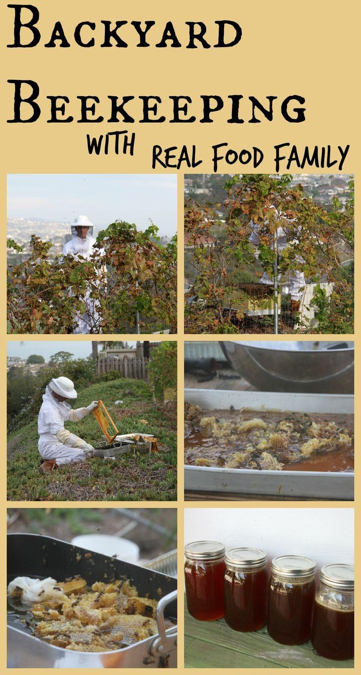 own bees too gardening pinterest chicken raising and backyards