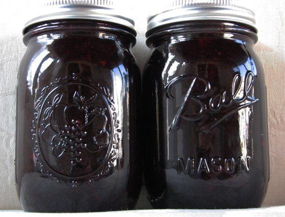 Organic Blueberry Jam  16 oz by LEAsGarden on Etsy, $9.00