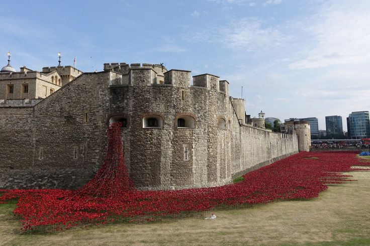 August 5, 2014 will mark one hundred years since the first day of Britain's involvement in the First World War artist Paul Cummins -designer Tom Piper will unveil an evolving art installation . Volunteers began placing the red ceramic poppies around the dry moat at the Tower of London weeks ago. a total of 888,246 poppies to represent each of British soldiers who lost their lives. A final poppy will be symbolically added on November 11th to commemorate the end of WWI or Armistice Day.