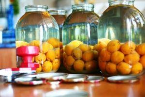 Morelówka sporządzana z małych aromatycznych moreli dostępnych w Polsce przez całe lato, jest doskonałą delikatną nalewką, szczególnie polecaną do deserów.