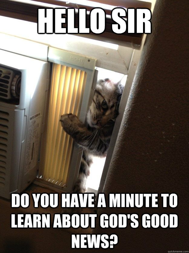 Jehovah Cat...LOL