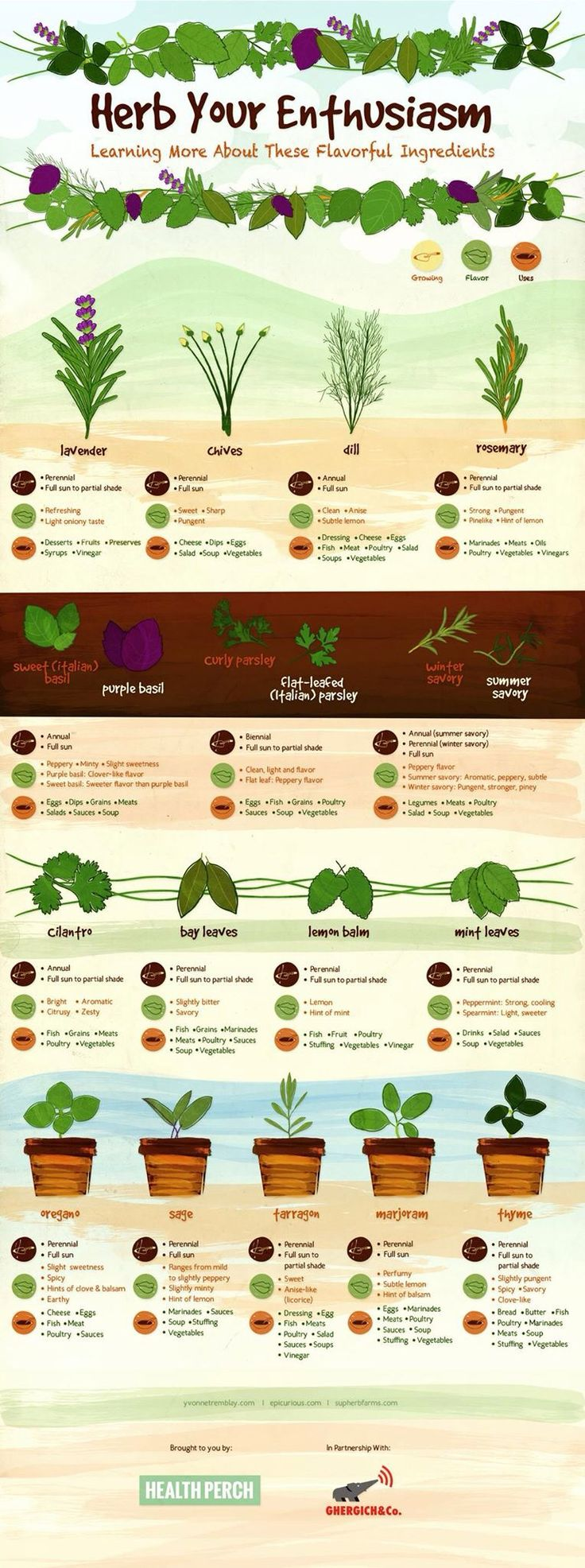 best gardening videos images on pinterest vegetable garden