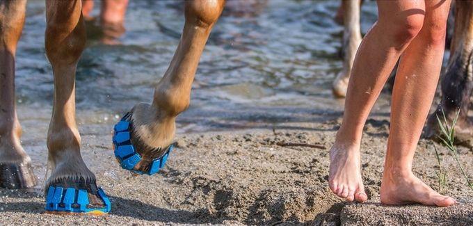 В Австрии разработали новый вид защиты для копыт, которая должна заменить железные подковы. Megasus Horserunners представляют собой съемную амортизирующую обувь для лошадей, которая подходит для всех типов местностей.