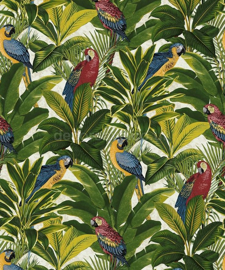 Grandeco Ideco Home Exotic Red Wallpaper A11502 - Tropical Forest Parrots Birds