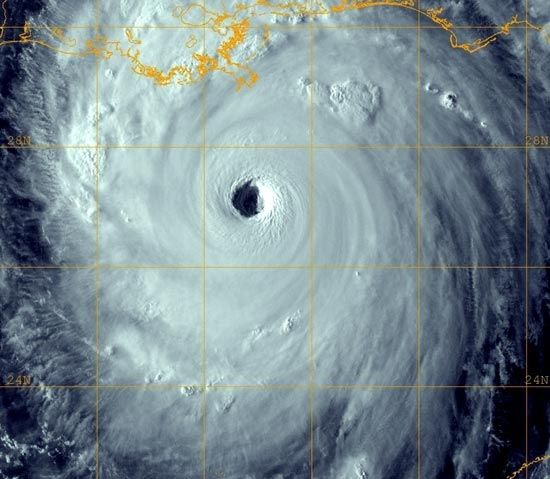 Hurricane Katrina Date: August 2005 Location: Louisiana, Mississippi, as well as other areas of the Southern United States Fatalities: 1,300     Total losses: $125 billion USD