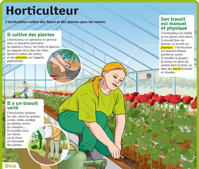 Fiche exposés : Horticulteur                                                                                                                                                                                 Plus