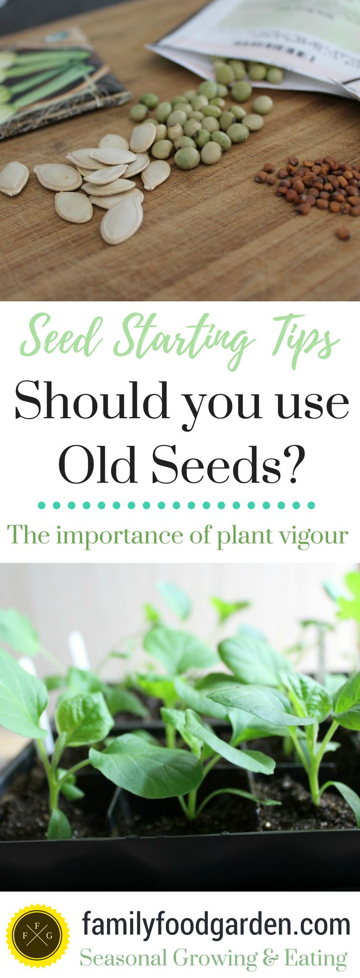This time of the year I see lots of seed starting tricks. One seed starting tip is pre-germinating your seeds before planting them into pots. Another is pre-germinating your old seeds so you're not wasting them. Now I'm a big fan of not wasting anything, however I'm also a gardener that focuses o