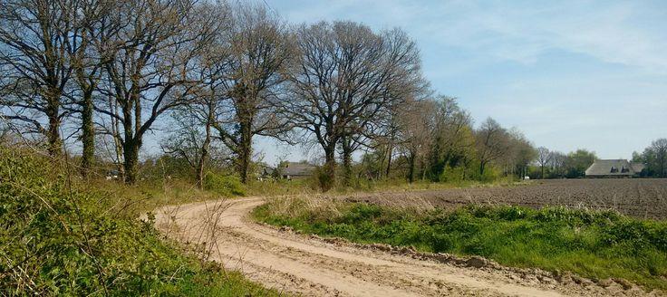 Zandweg naast akkers en weilanden. Drenthe op z'n best!