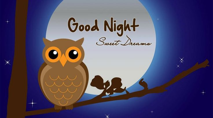 Good night Sweet Dreams #goodnight #gn #quotes