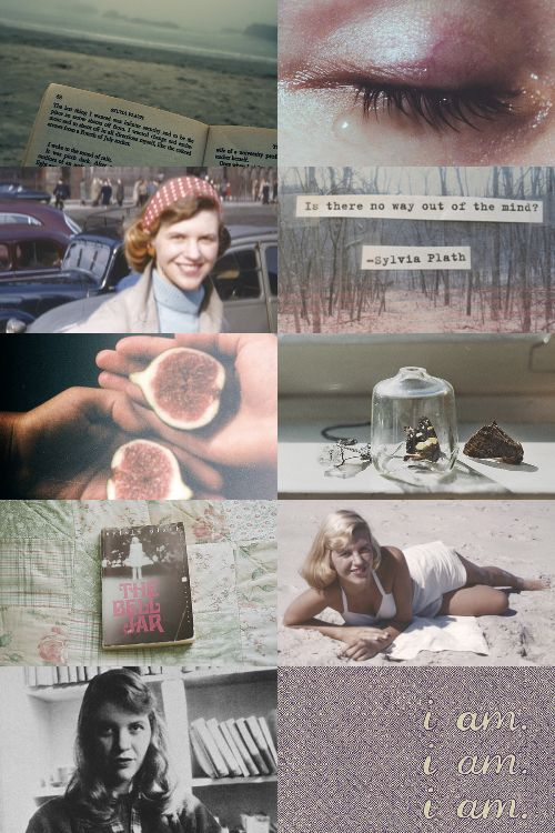 Sylvia Plath's The Bell Jar                              …