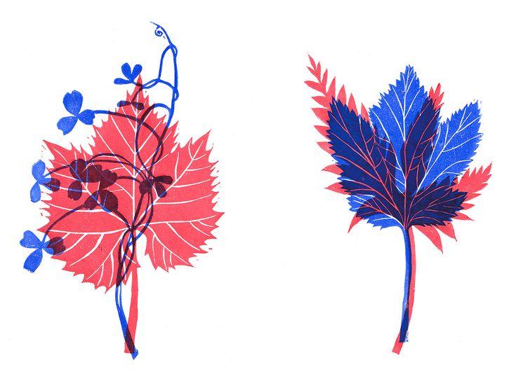 Herbarium // Linocut