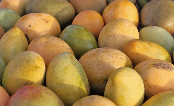 jamaican fruits healthy dry fruits list