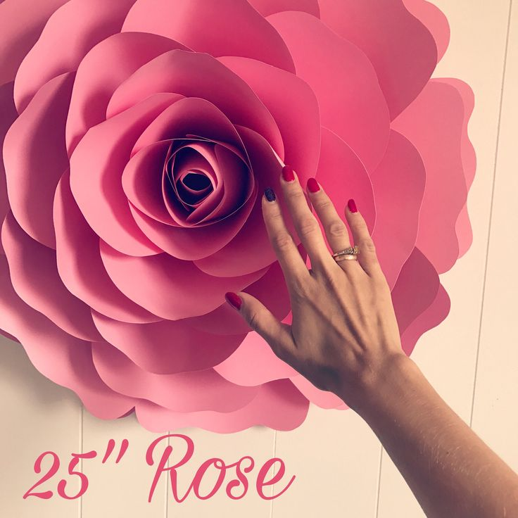 379 best paper flowers images on pinterest paper flowers giant x large giant paper flower large paper flower big paper flower for any occasion rossaria mightylinksfo