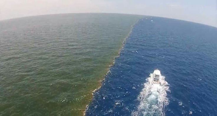 What a mighty God we serve! This is where the Mississippi River & the Gulf of Mexico meet. They don't mix. They never mix.