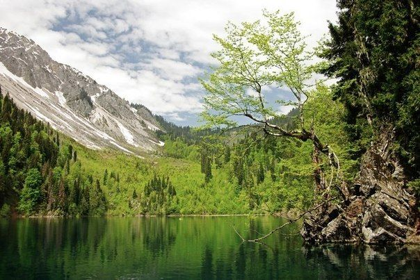 Озеро Малая Рица, Абхазия