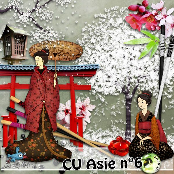 CU Asia n°6_ Geisha's Blossom_ by Marie