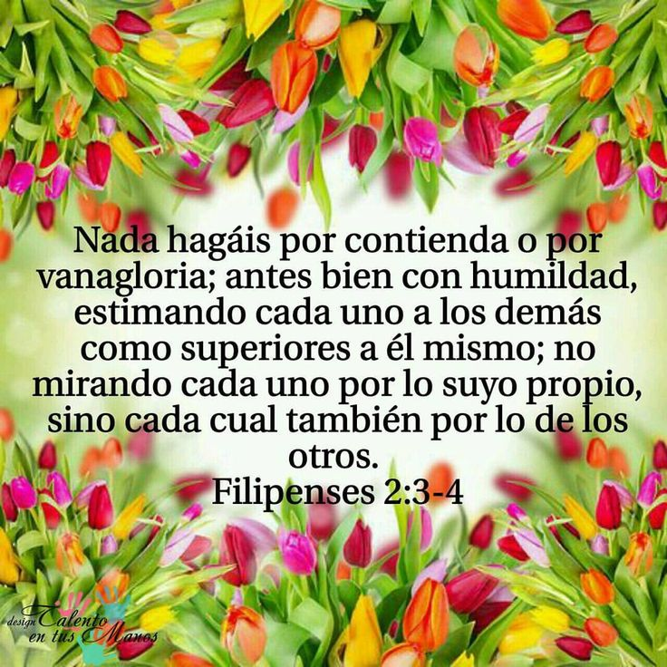 FILIPENSES 2:3-4