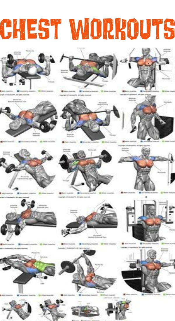 Chest Workout Routine for Men Best 11 Workouts for