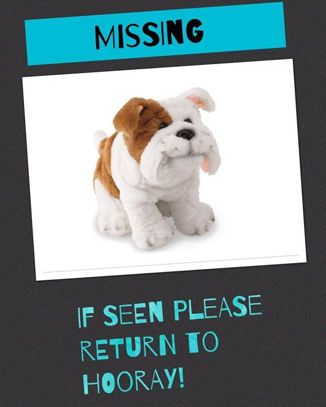 Happy Friday Our Bulldogs Have Gone Missing If You See Them