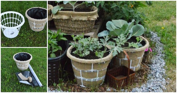 Cheap plastic laundry baskets in the flower or vegetable garden