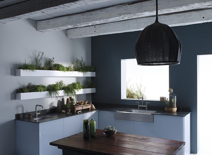 14 best Indoor Kitchen Herb Garden images on Pinterest | Herbs ...