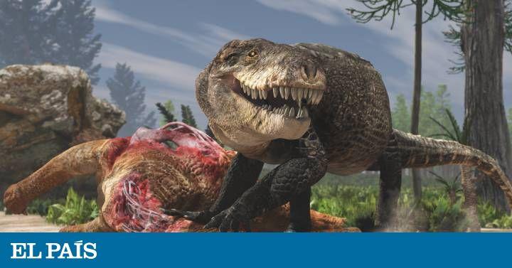El cocodrilo gigante que tenía la dentadura de un Tiranosaurio Rex | Ciencia | EL PAÍS