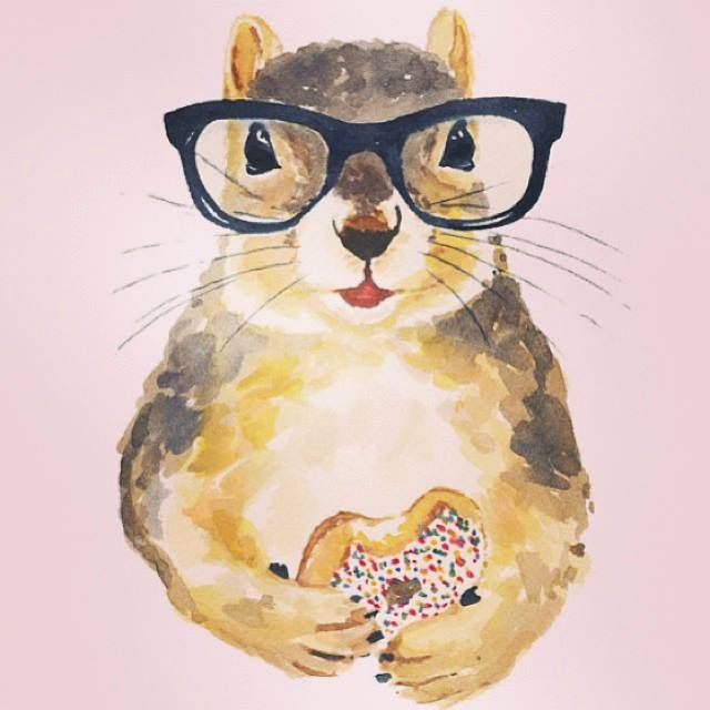 squirrel + donut =♡♡