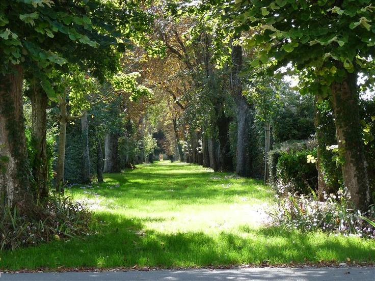 domaine de la gravette niort location de salle de mariage salle de reception - Salle Mariage Vallet