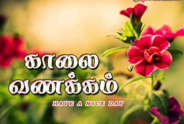Pin By Uthaya Kumar On My Saves In 2021 Good Morning Images Morning Images Good Morning Quotes