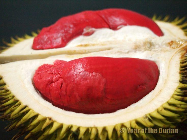 Sabah red durians